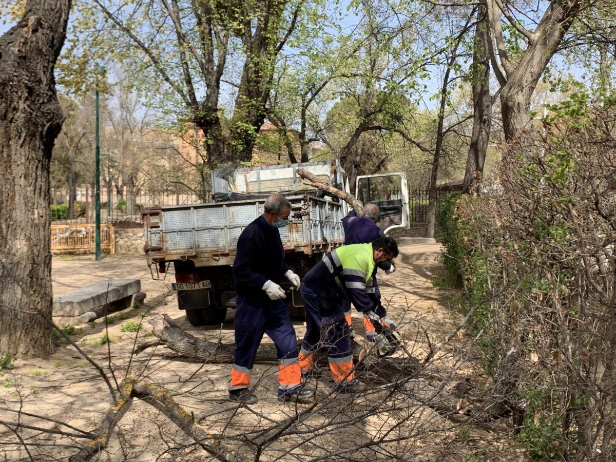 https://www.toledo.es/wp-content/uploads/2021/03/foto-29-3-21-13-05-18-1200x900.jpg. Continúan los trabajos de limpieza y recuperación de árboles y zonas verdes afectadas por Filomena con criterios de seguridad