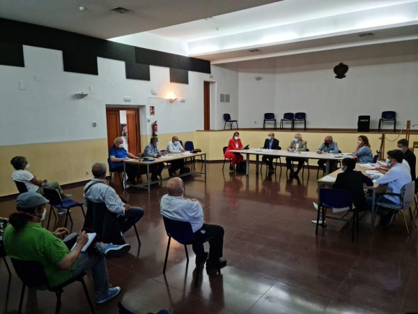 Consejo Participación distrito centro_2