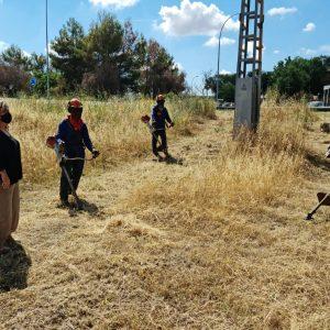 ontinúan las labores de desbroce en diferentes puntos de la ciudad como el Parque Lineal, junto al Polígono Industrial