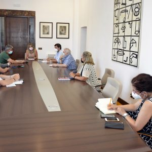 a Junta de Gobierno aprueba varias iniciativas relacionadas con el VIII Centenario de Alfonso X El Sabio