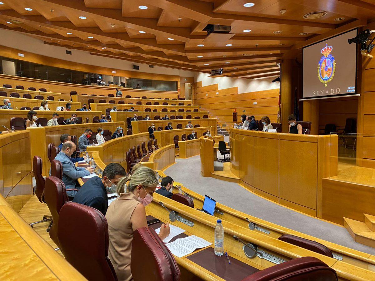 https://www.toledo.es/wp-content/uploads/2021/07/whatsapp-image-2021-07-05-at-17.17.12-1200x900.jpeg. Milagros Tolón asiste en el Senado al Pleno de la Comisión Nacional de la Administración Local presidido por el ministro Miquel Iceta